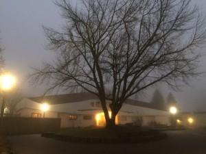 Flaches, weißes Haus mit runden Formen im Morgennebel